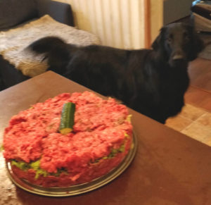 Raw cake for dog